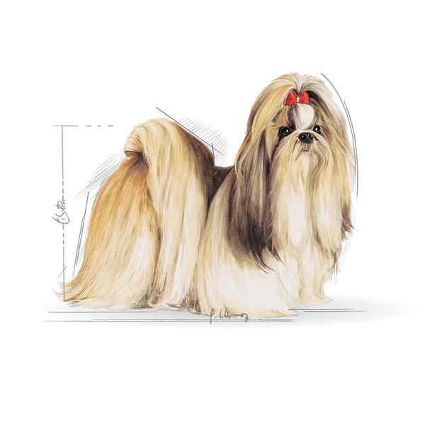 Royal Canin Shih-tzu - 1,5 kg