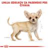 Royal Canin Chihuahua Puppy - 0,5 kg