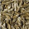 Tropical Dried Fish - 250 ml / 35 g