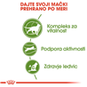 Royal Canin Outdoor +7 - 2 kg
