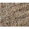 Deli Nature Premium hrana za papige (skobčevka) - 4 kg