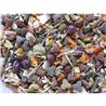 Deli Nature 5* hrana za morske prašičke - 2,5 kg