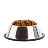 Eukanuba Senior - jagnjetina in riž - 2,5 kg