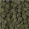 Tropical Green Algae Wafers - 100 ml / 45 g