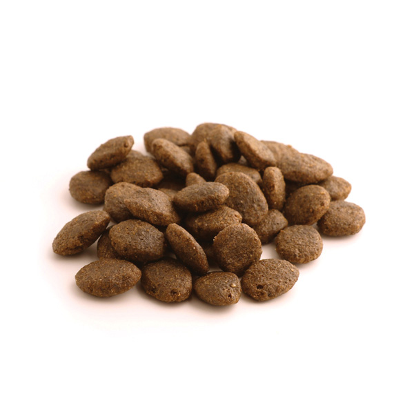 Fish4Dogs Adult - losos - 6 kg