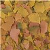 Tropical Goldfish Color - 250 ml / 50 g