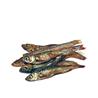 Prodac Tartafood Fish - 1200 ml / 200 g