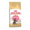 Royal Canin Maine Coon Kitten - 2 kg