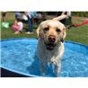 Nobby bazen za pse s prevleko - fi 120 x 30 cm
