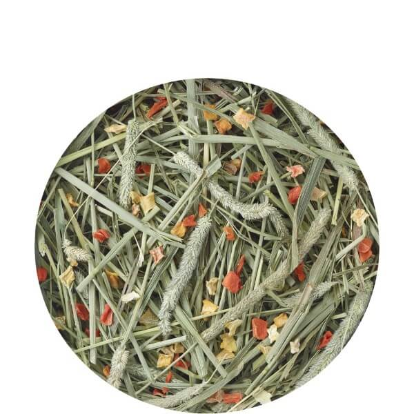 Versele Laga Nature seno Timothy Hay - korenje in buča - 500 g