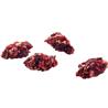 Versele Laga Nature Snack Bits posladek z rdečo peso - 100 g