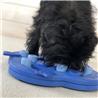 Nina Ottosson interaktivna igrača Dog Hide N'Slide Composite - Level 2