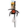 All For Paws igralna palica s pajkom - 43 cm