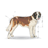 Royal Canin Junior Giant - perutnina - 15 kg