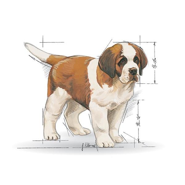 Royal Canin Puppy Giant - perutnina - 15 kg