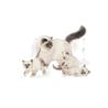 Royal Canin Mother & Babycat - perutnina - 400 g