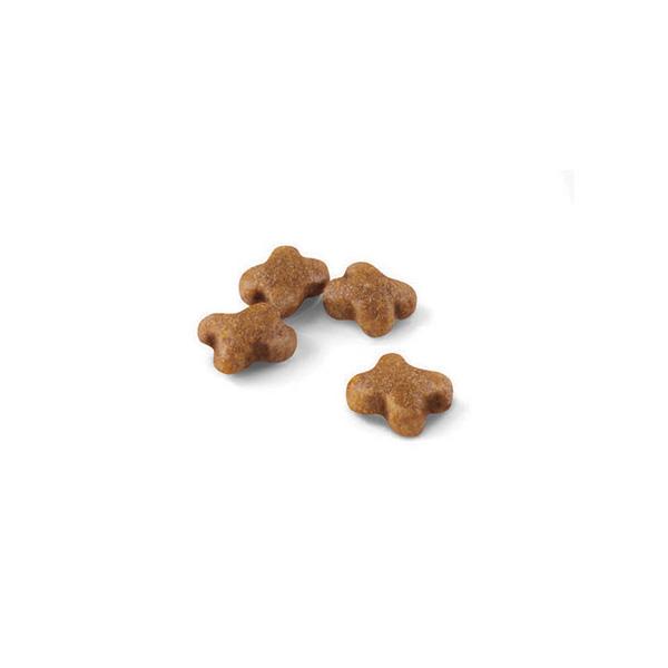 Royal Canin Kitten - perutnina - 4 kg