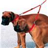 Ferplast rezdelilnik za dva psa, mix -38 cm / 20 mm