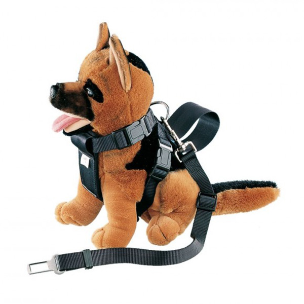 Nobby varnostni pas z oprsnico - Extra Large