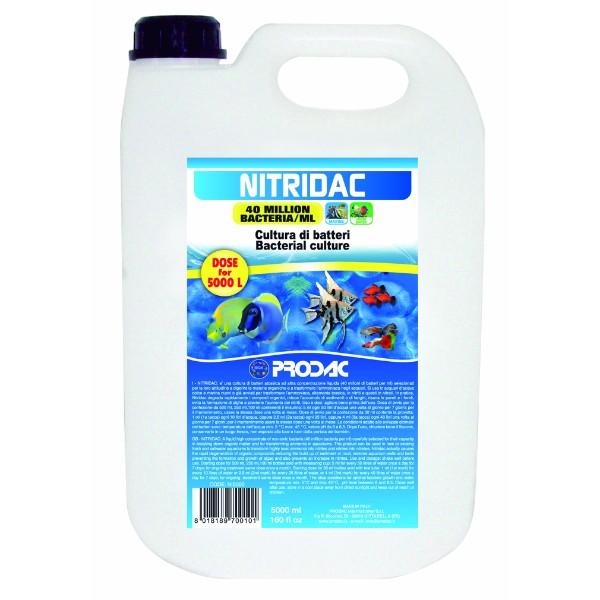 Prodac Nitridac bakterije - 5 l