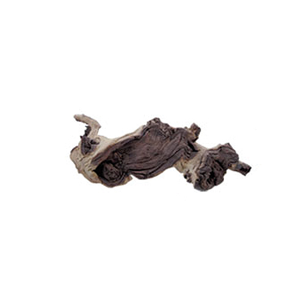 Prodac korenina Mopani, M - 30-45 cm