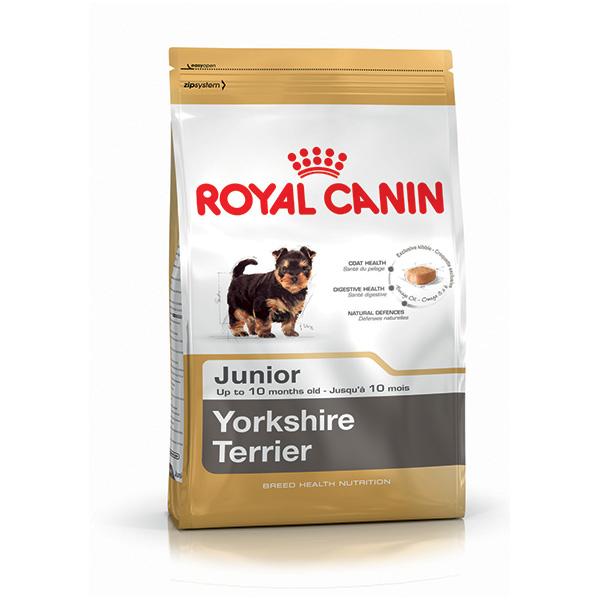 Royal Canin Yorkshirski terier Junior - 500 g