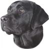 Pasemske nalepke, različne pasme (2 kos) labradorec (črni)