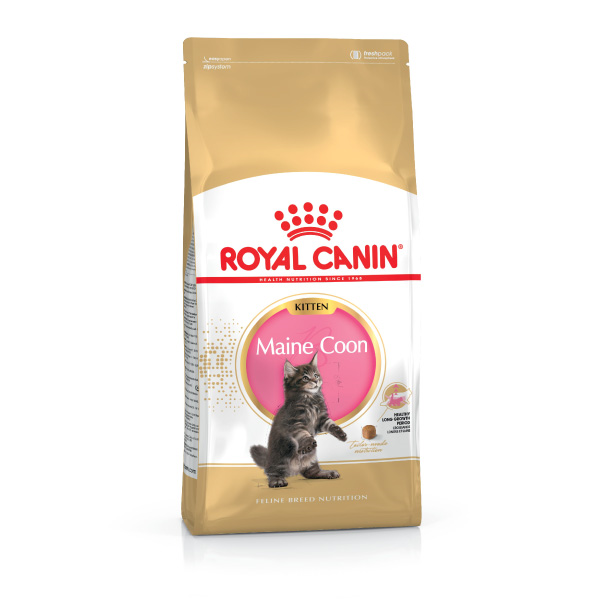 Royal Canin Kitten Maine Coon - perutnina - 4 kg