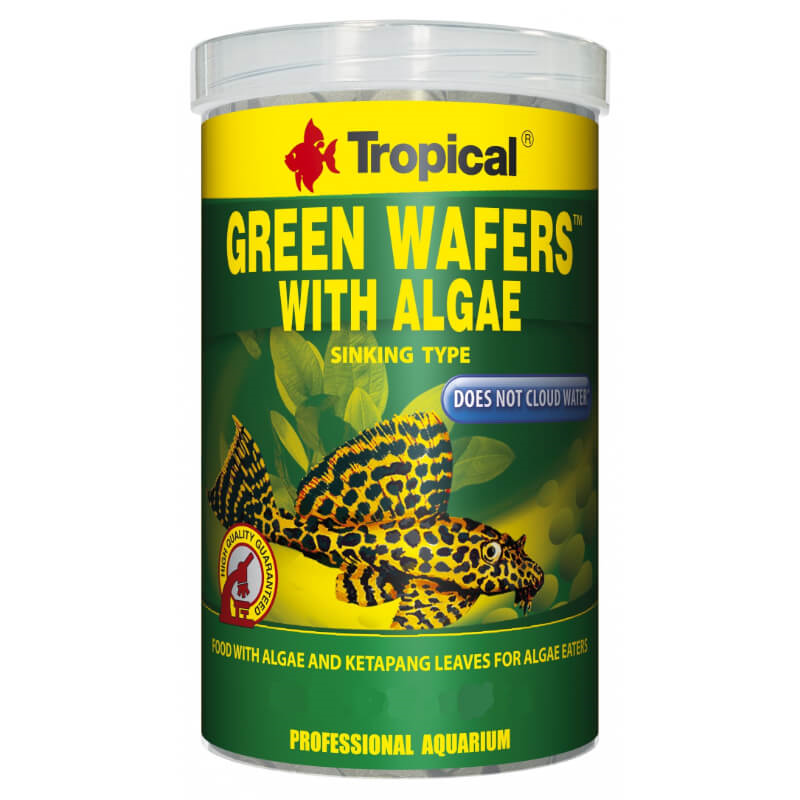 Tropical Green Algae Wafers - 250 ml / 113 g