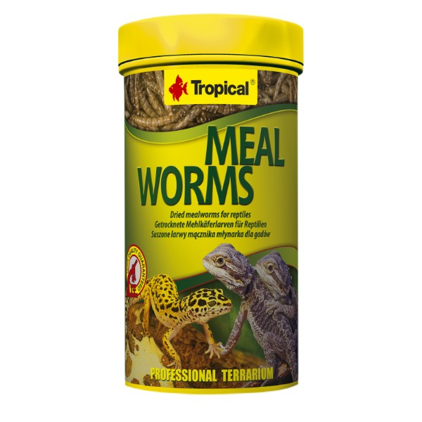 Tropical Meal Worms - 250 ml / 30 g