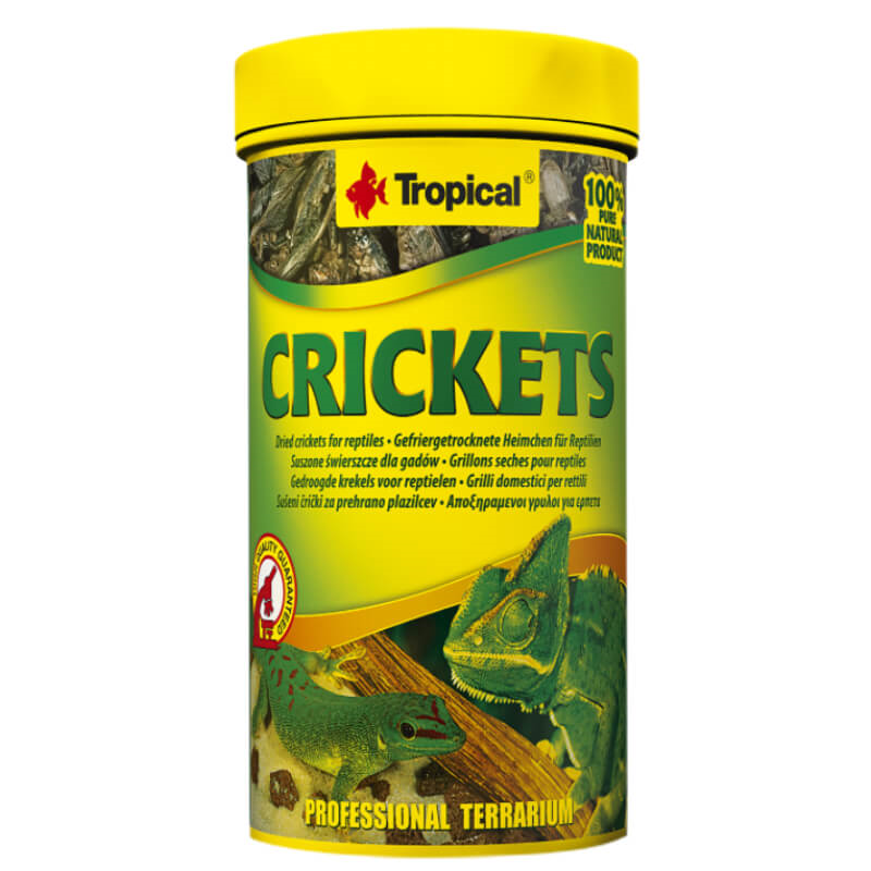 Tropical Crickets - 250 ml / 25 g