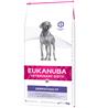Eukanuba Dermatosis veterinarska dieta za težave s kožo 12 kg