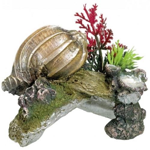 Nobby dekor kamen in školjka - 11 x 7,5 x 8,5 cm