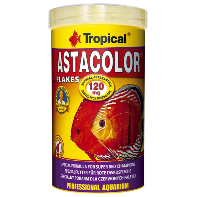 Nobby posoda keramika, vijolična in bež - 13,5 cm