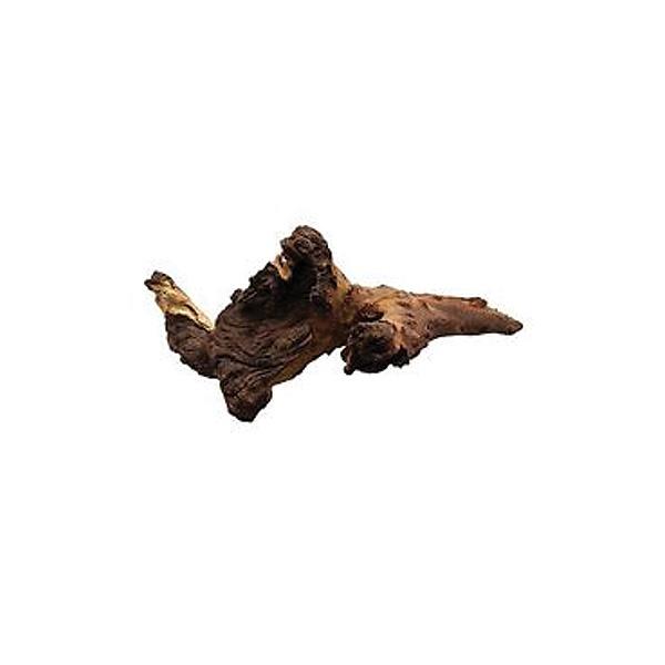 JBL korenina Mopani, S