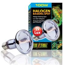 Exo Terra grelna žarnica halogenska - 100 W