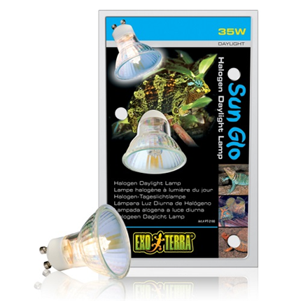 Exo Terra grelna žarnica halogenska za Dual Top - 35 W