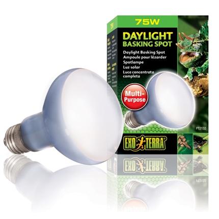 Exo Terra grelna žarnica UVA Daylight - 75 W