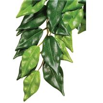 Exo Terra svilena rastlina za terarije fikus - L