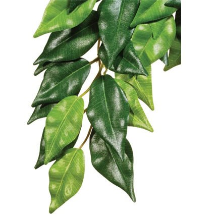 Exo Terra svilena rastlina za terarije fikus - M