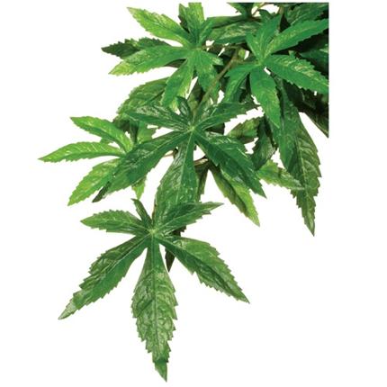 Exo Terra svilena rastlina za terarije oslezovec - M