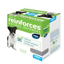 Viyo Reinforces prebiotični napitek za pse Puppy - 7 x 30 ml