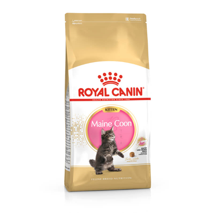 Royal Canin Maine Coon Kitten - 2 kg