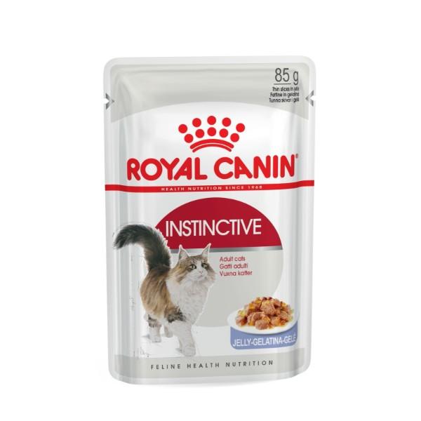 Royal Canin Adult Instictive + 7- žele- 85 g