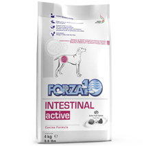 Forza10 veterinarska dieta Intestinal Active - 10 kg