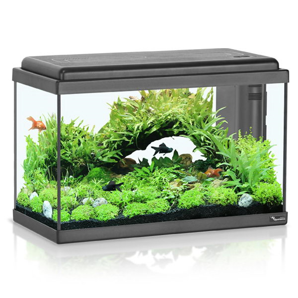 Akvarij Aquatlantis Advance LED 50 (44 L), črn - 50 x 25 x 35 cm