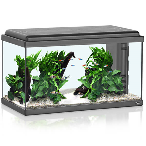 Akvarij Aquatlantis Advance LED 60 (61 L), črn - 60 x 30 x 34 cm