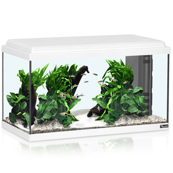 Akvarij Aquatlantis Advance LED 60 (61 L), bel - 60 x 30 x 34 cm