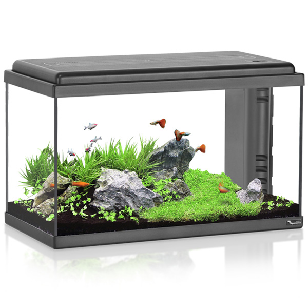 Akvarij Aquatlantis Advance LED 60+ (68 L), črn - 60 x 30 x 38 cm