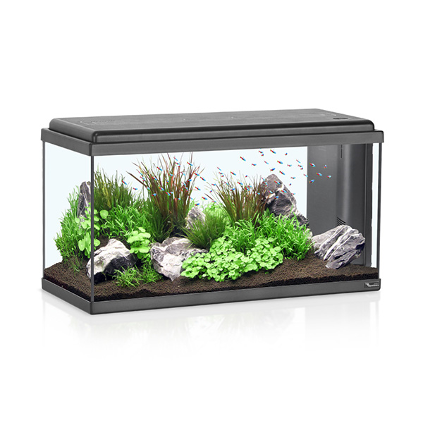 Akvarij Aquatlantis Advance LED 80 (96 L), črn - 80 x 30 x 40 cm